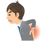 背中・腰の部分(肩甲帯・背部・腰部)  イメージ画像